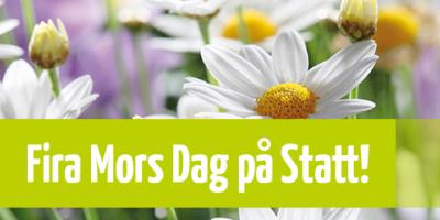 Mjölby-Stadshotell-MorsDag